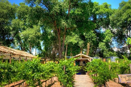 Vineyard/Winery Casitas -  Santa Fe - Talo