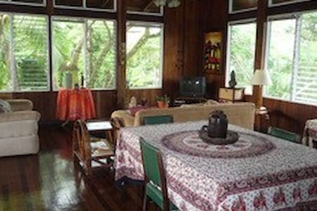 Top floor of lovely sunny house; walkable to beach - manuel antonio - House