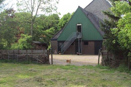 Rust en ruimte in Noord-Holland ! - Appartement