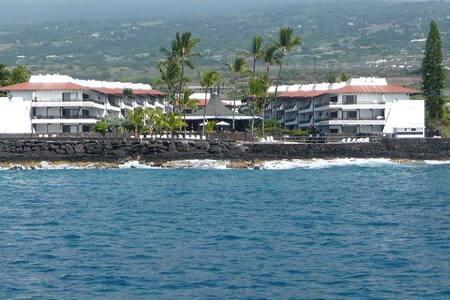 Oceanfront saltwater pool on Alii Drive in Kona - Kailua-Kona - Apartment