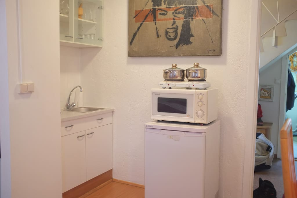 A small kitchen with a heating plate, fridge and microwave