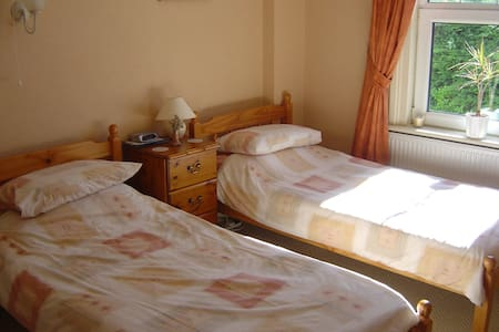 Bright Twin Room - Bed & Breakfast