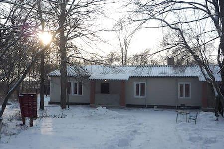 Townhouse - Kanuevka - Ev