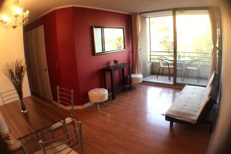 Cómodo departamento Cerca del Centro - Recoleta - Apartment