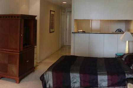 Executive apartment in CBD heart