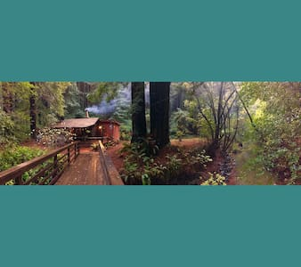 Magical Redwood Log Cabin Retreat - @NicasioNest - Nicasio