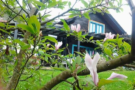 CASA KIKO - Arriondas - House