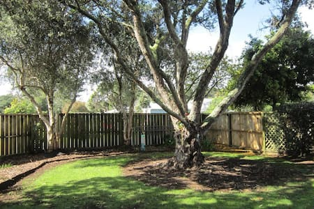 Matapouri Haven - your private Oasis! - House