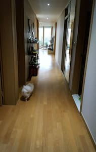 Brand new fancy Apartment in Jung-gu, Ulsan
