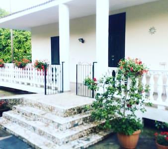 Villa Elisabetta - House