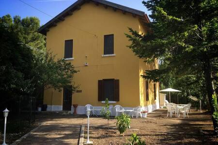 B&b baia di Calenella, Gargano - Vico del Gargano - Bed & Breakfast