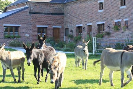 Les Mout'ânes - Bed & Breakfast