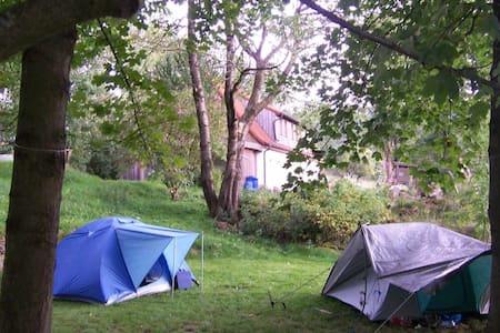 Zelten  bei der Aueralm in der Idylle - Bischofsgrün