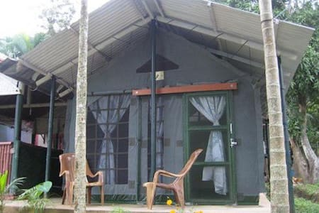 Greenwoods Nature Camp, Mudumalai (near Bandipur) - Guesthouse
