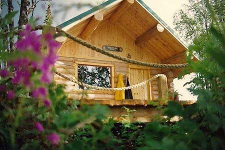 Kenai River Cabin w/ great fishing - Cabin