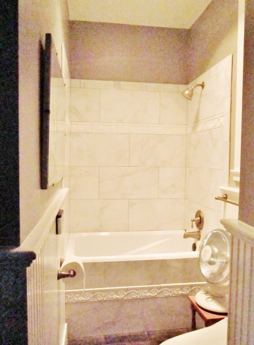 Shower; deep tub; toilet with bidet seat