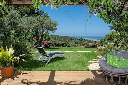 Above the sea, Luxury B&B, Ein Hod - Wikt i opierunek
