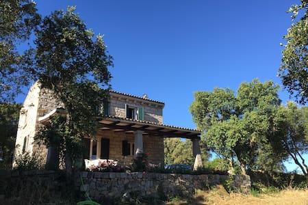 Sa Mariola - Luras - House
