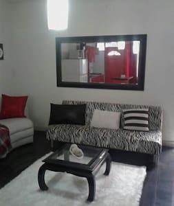 Beautiful private apartment (Loft) in Cartago - Loft