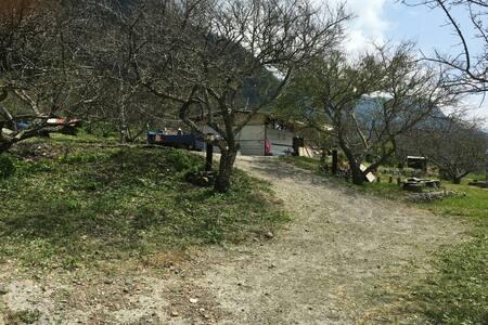 部落單車露營區 - Tent