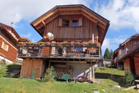 Haus Wohlfuehlzeit Falkertsee - Ház