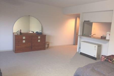 千歳空港から11Km。貸切マンション,ゲストハウス,宿泊広々快適 - Villa