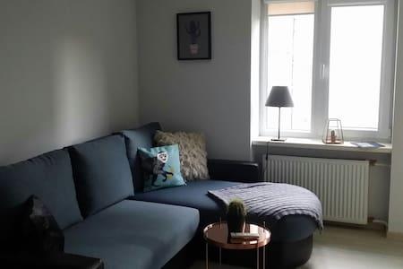 Central & cozy studio apartment - Lägenhet