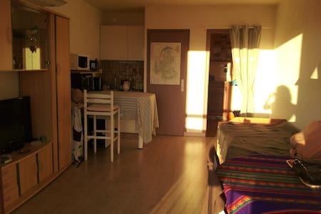 Studio fonctionnel 25m² exposé S/O - Appartement