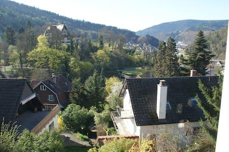 Im schönen Schwarzwald - Huis