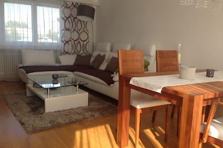 Ruhige Dachwohnung mit Blick ins Grüne - Reinach - Appartement