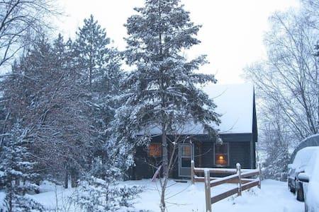 Log cabin on a lake - Richmond