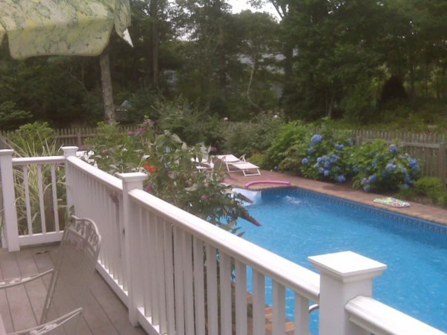 Another view of the pool from the deck which has the grill and dining set and day beds.