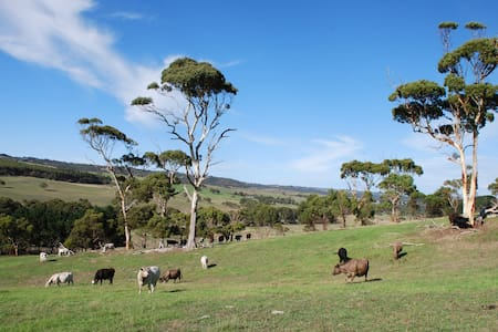 Lisieux Farm on the Fleurieu - Back Valley - Bed & Breakfast
