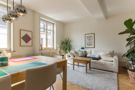 Cosy & large in the heart of Basel - Apartment