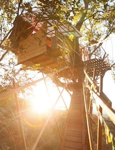 Araras Treehouse - The tallest in Brazil! - Baumhaus