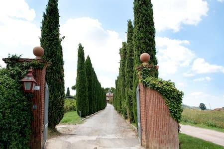 Buon Riposo - Vacation in Tuscany 4 - Talo