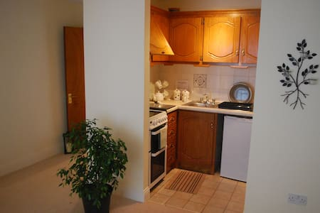 2 Bedroom in the heart of the city - Kilkenny - Apartment