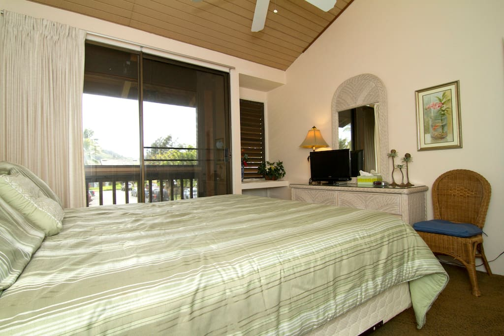 Master bedroom downstairs, with small screened balcony, TV