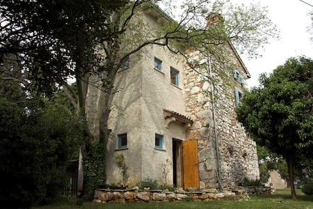 Botanica - House