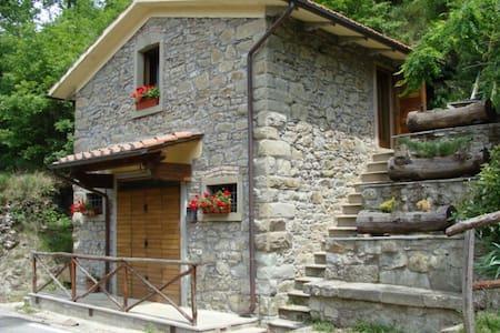 Georgeous House with nice garden  - Castel San Niccolò - Chalet