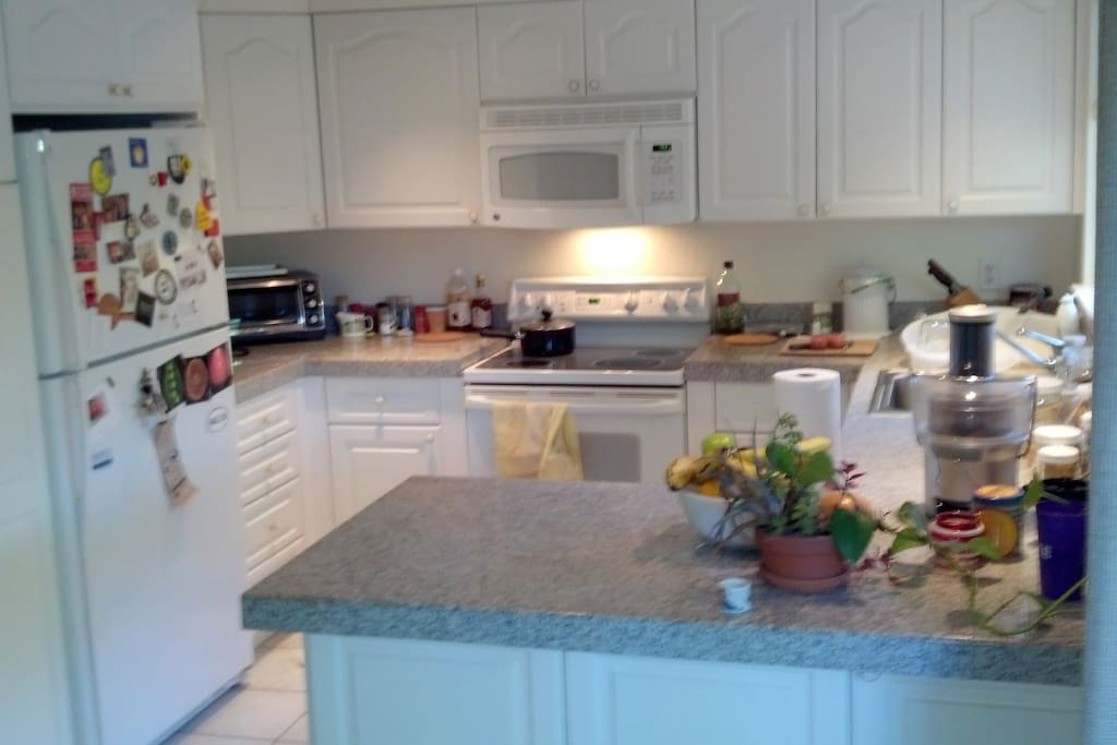 Clean and beautiful kitchen with all the appliances.