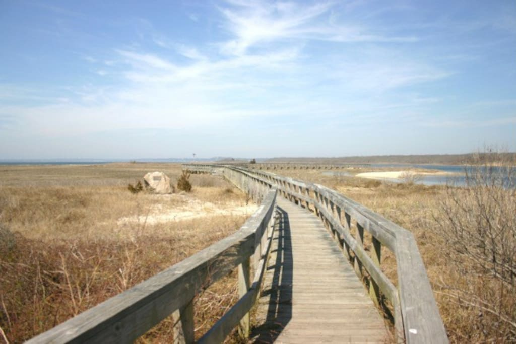 10 minute drive to picturesque nature preserve along dune road