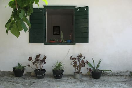STUDIO IN PITVE - Dalmatia - Rumah