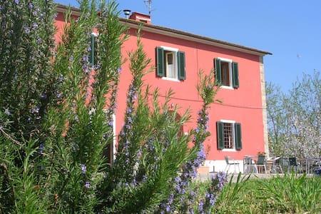 La Casa di Marcello  - Vinci - House