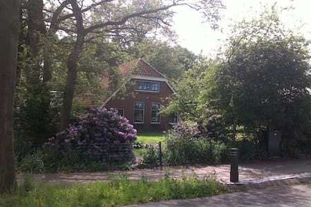 Lovely cottage with tons of privacy in Drenthe - Mantinge - Kisház