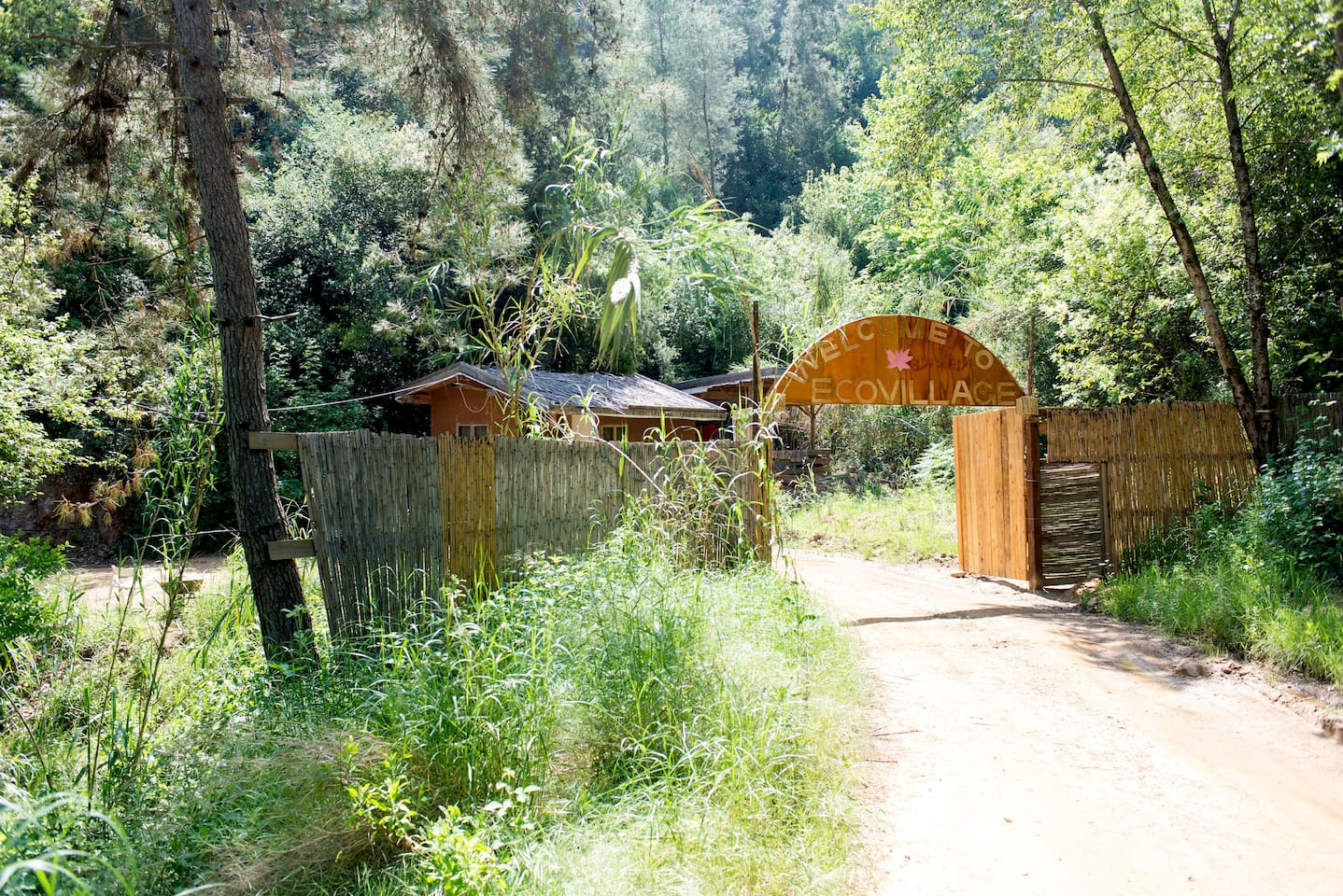 Beirut. great Treehouse Ecovillage