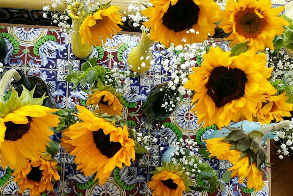 Beautiful Sunflowers used for decoration by a guest for their wedding!
