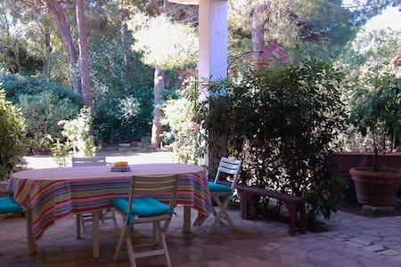 Veranda e giardino, mare e pineta - Apartmen