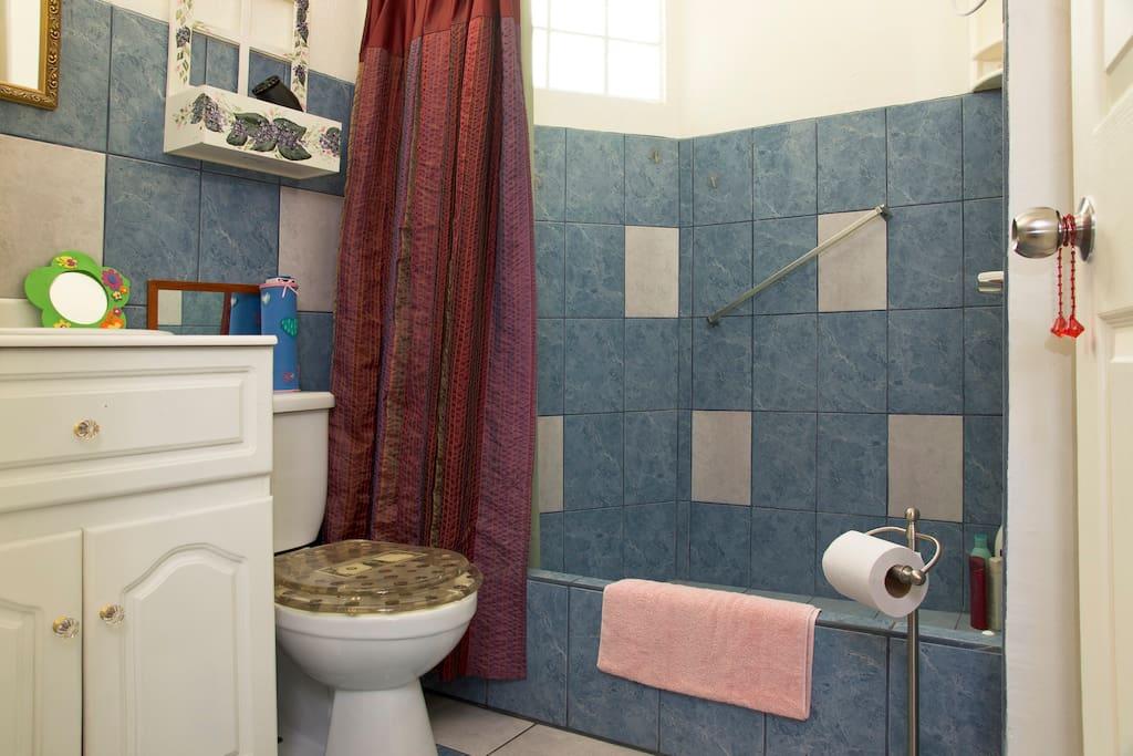 Room w/private bathroom in Nice Apt