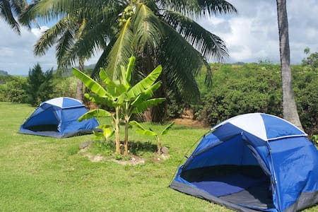 Space #1 -Old Kapaa Town Campground